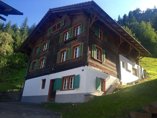 Traditional Swiss House in Nature - Tavanasa - Hus