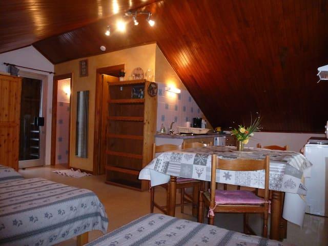 studio dans chalet indépendant au calme - Valloire - Huoneisto