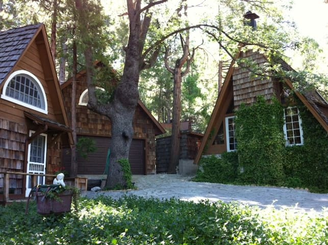 Quiet Loft Studio Unit in Forest - Idyllwild-Pine Cove - Loft
