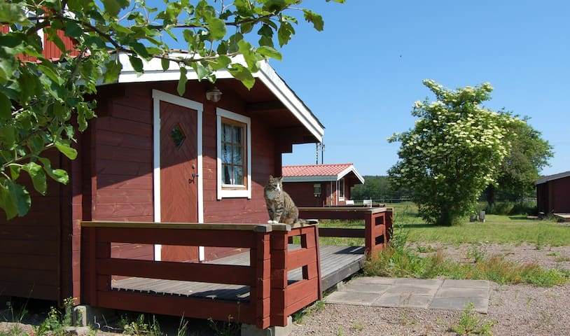 The Findus cabin next to the river Emån - 579 92 Högsby - Cabaña