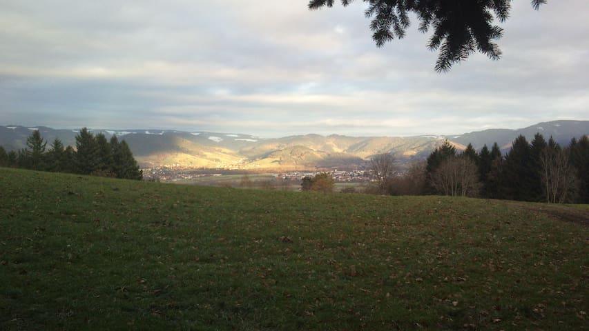 Appartem. Ruhe, Sauna, Pool, Sport, Erholung - Schönwald im Schwarzwald