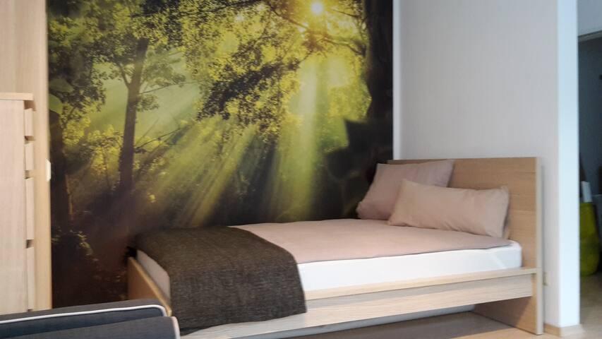 Modern eingerichtetes Appartment in Ingolstadt - Ingolstadt - Appartement