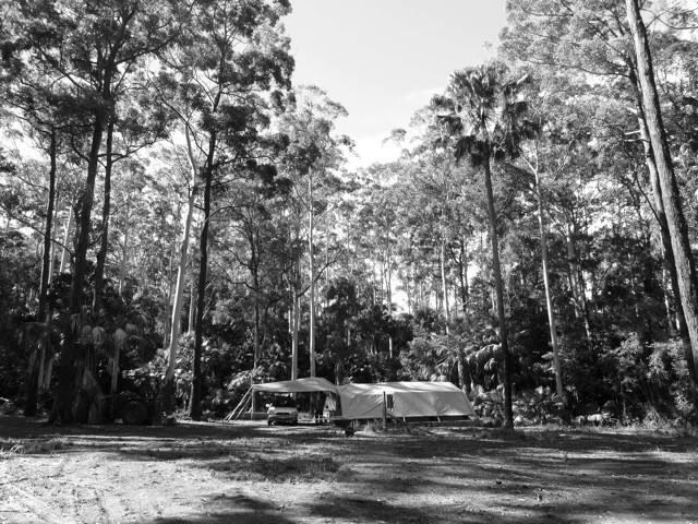 Forest Dream Retreat - Tarbuck Bay - Cabaña