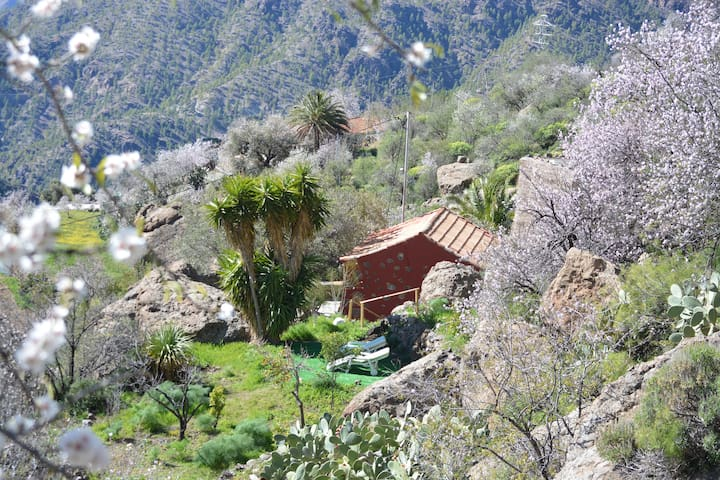 Lovely cave house the Pedregal - Tejeda - Dom