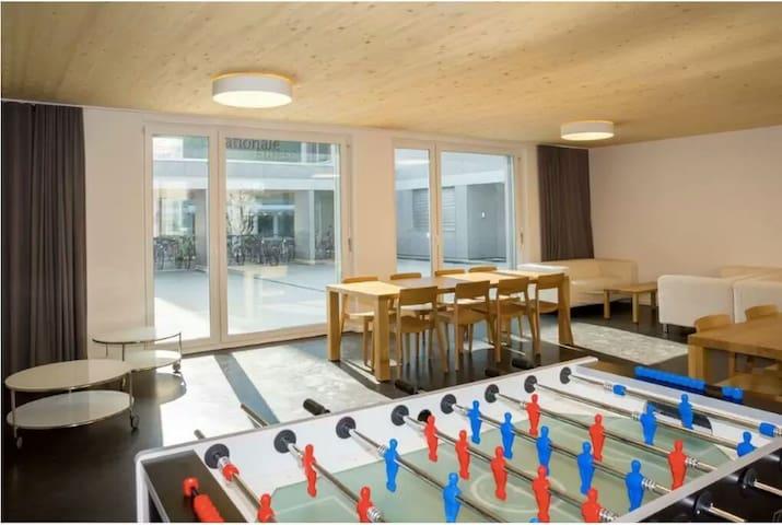 Nice & Cheap 1 Bed. Apartment in Winterthur/Zürich - Winterthur - Appartement