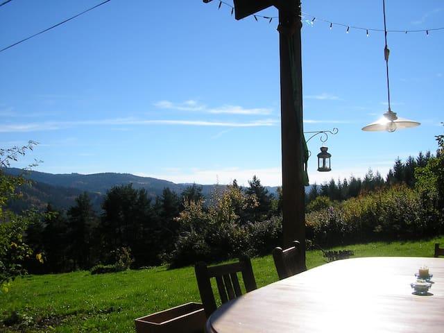 Maison d'amis 3 cottages belle vue - Laval-sur-Doulon - Casa de campo