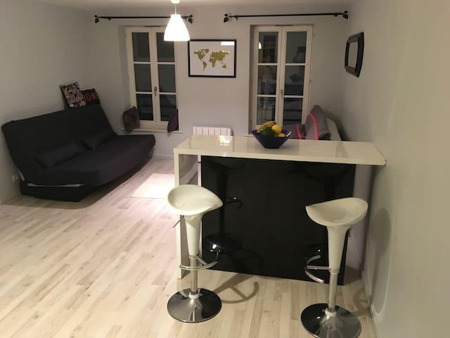 Appartement hypercentre place Stan - Nancy - Daire