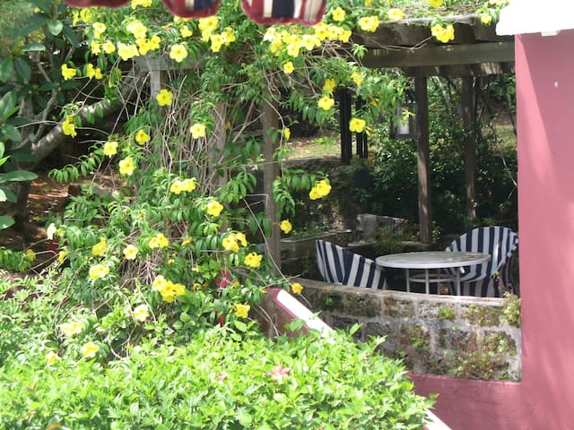 Peace and Tranquility in Bermuda! - Southampton - Appartement