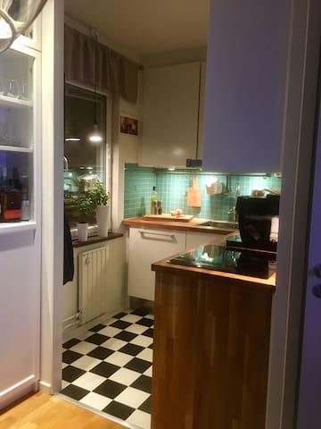 Nice and cosy apartment near Stockholm city life! - Huddinge