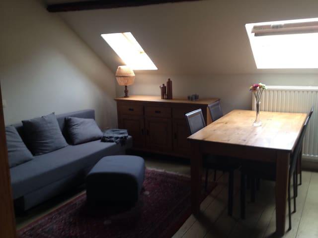 Cozy private studio under the roof in Antwerp - Antwerpen