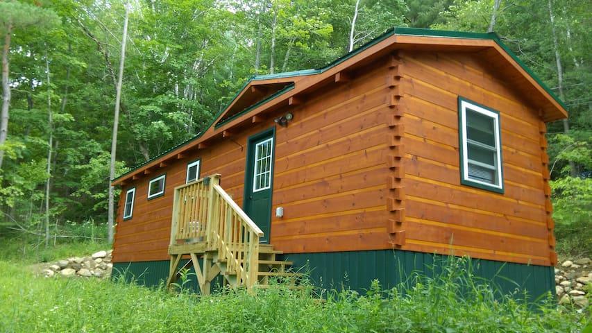 Saranac Lake Cabin - Close to Everything! - Saranac Lake - Hytte