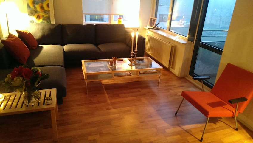 Sunny and private apartment in Amersfoort - Amersfoort - Daire