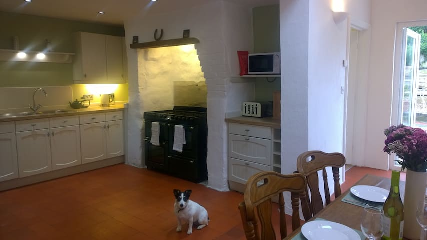 Hafan Bach - Dog friendly cottage in Kidwelly - Kidwelly - Huis