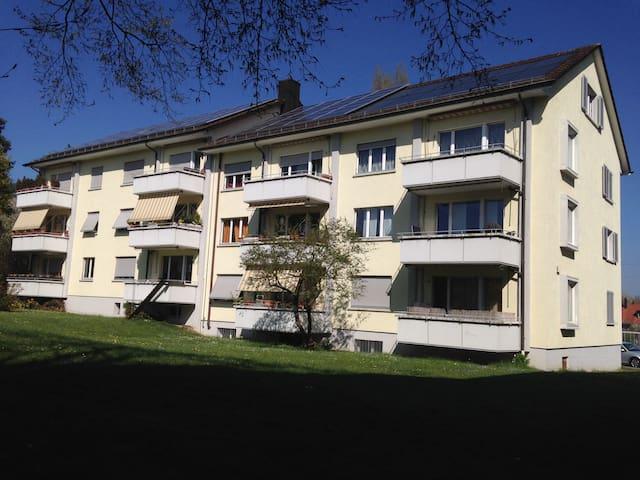 kleine Dachwohnung mit Charme - Winterthur - Lägenhet