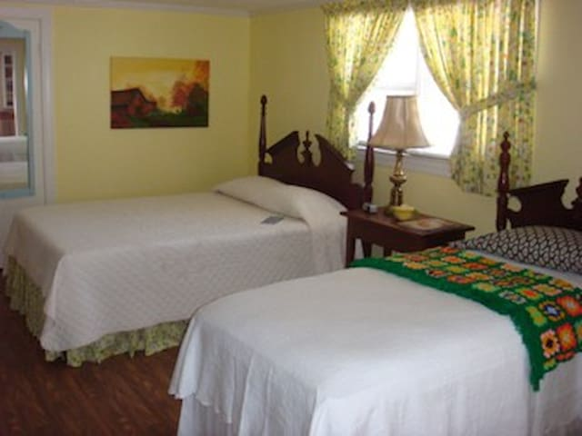 Enter as a guest depart as a friend - Elm City - Bed & Breakfast