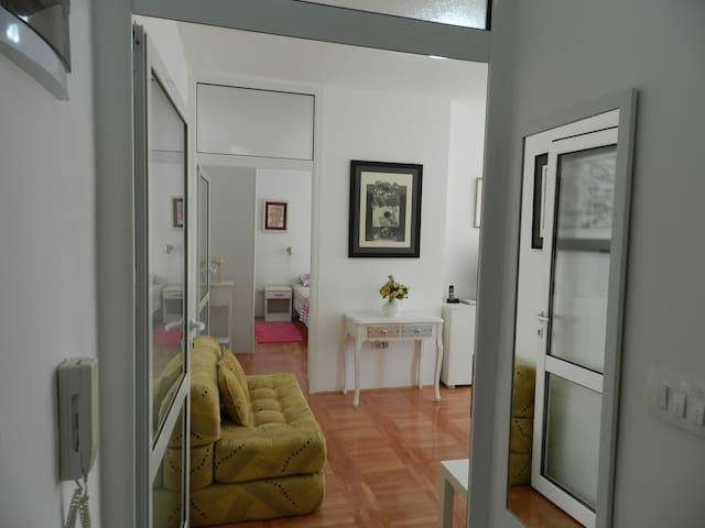 Cute apartment CENTRAL location - Podgorica - Daire