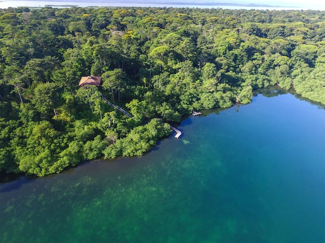 Jungle House Solarte - Queen Room - Private Bath - Bocas del Toro - Naturstuga