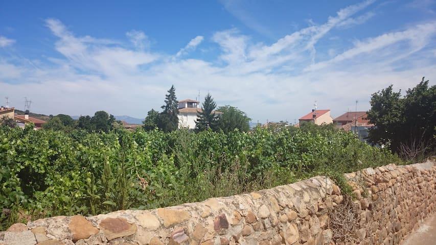 Piso nuevo montaña y bodegas Rioja - Medrano - Квартира