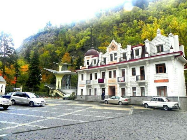 Borjomi , Park - Borjomi - Apartment