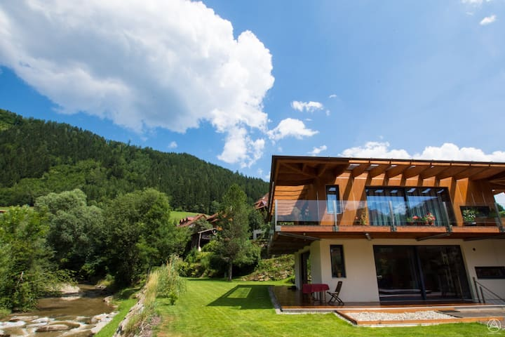 Quite hide away at the river - Murau - Appartement