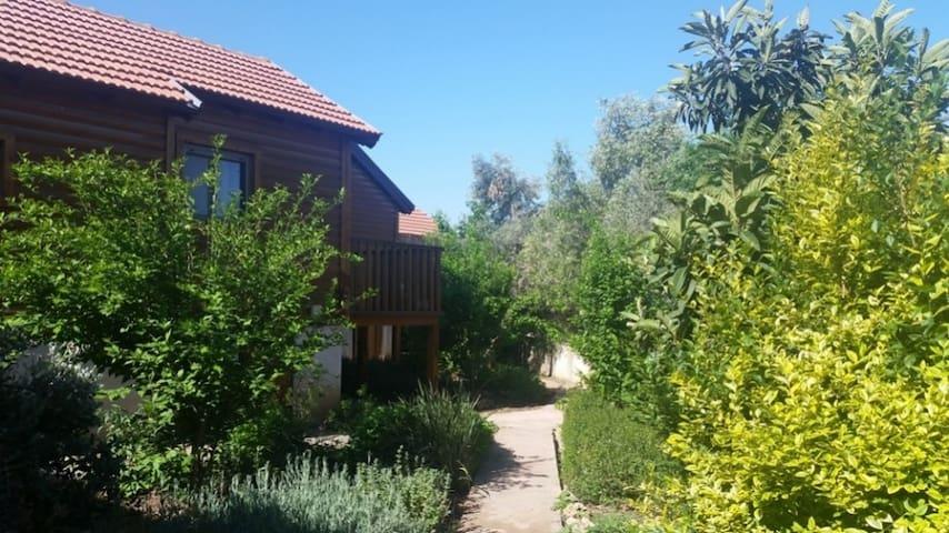 Fruit garden Zimmer in Judean hills - Bar Giora