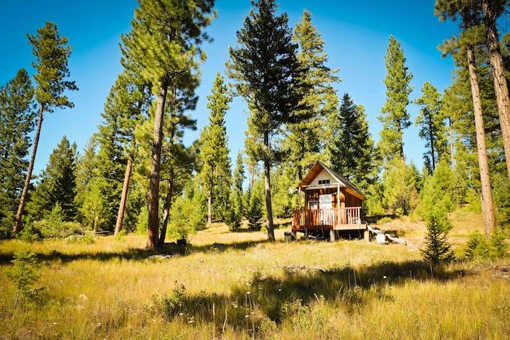 Off grid and quiet - mini cabin close to Missoula - MT - Бунгало