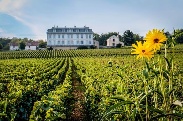 45m2 appt Vineyard View in Chateau - Comblanchien - Leilighet