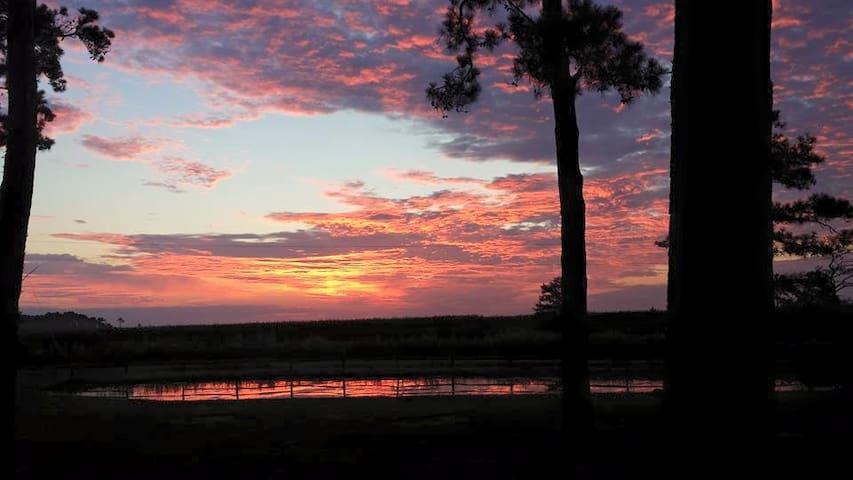 Back Bay Hideaway Suite - Virginia Beach - Casa