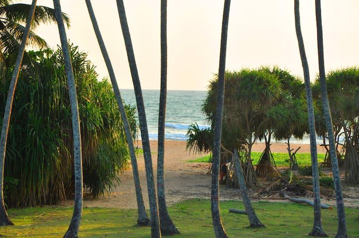 Garden View rooms at Ocean View Hotel Bentota - Bentota - Appartement