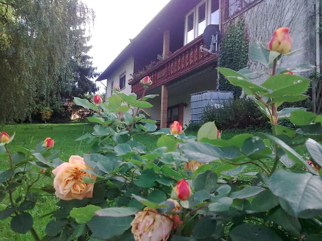 Abschalten in der Natur - Ferienwohnung Peters - Schotten - Appartement