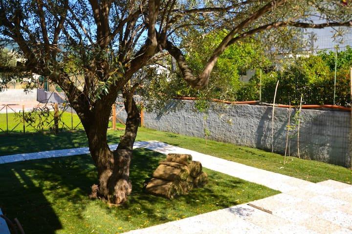 beautiful spacious villa with olive - Isca sullo Ionio - 단독주택