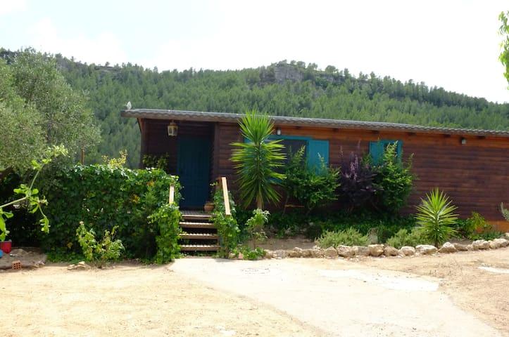 Houten huis tussen de olijfbomen. - Mont-roig del Camp