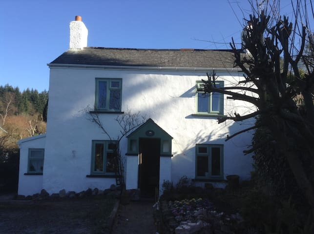 Room in beautiful old cottage - Yorkley - Huis