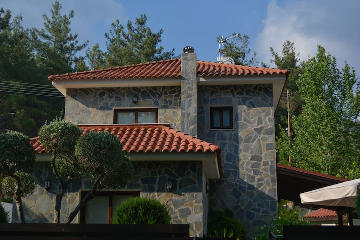 Moniatis Forest House - Moniatis - Villa
