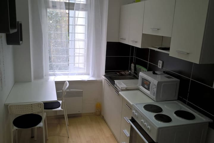 Whole equipped apartment in a CITY CENTER of Brno - Brno - Apartmen