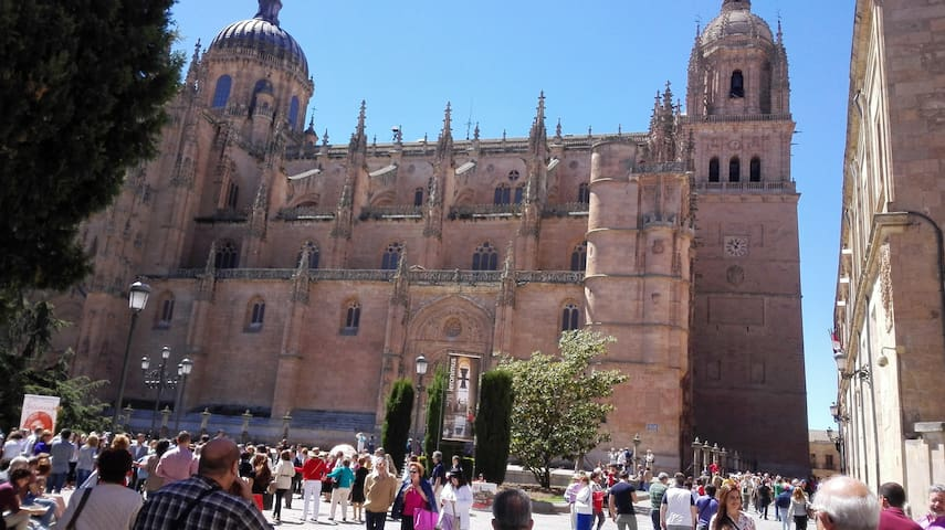 SALAMANCA CIUDAD MONUMENTAL - Salamanca - Huis