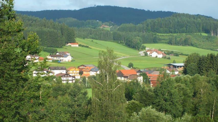 Ruhiger Ort mit Naturgenuss pur - Langdorf - Hus