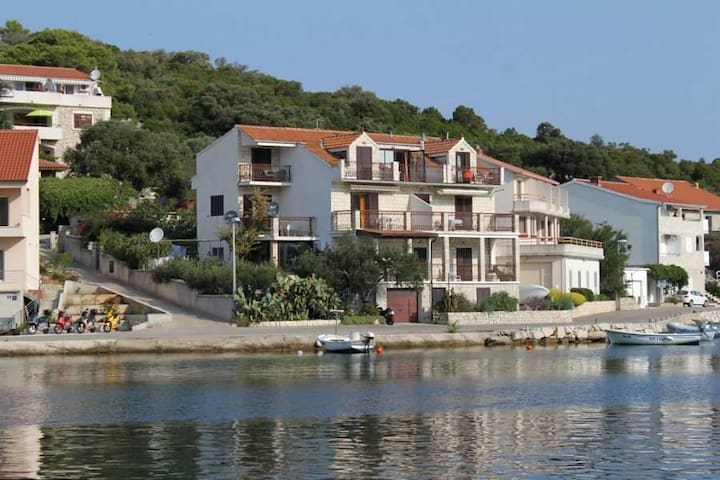 One bedroom apartment with terrace and sea view Pasadur, Lastovo (A-996-b) - Pasadur - Daire