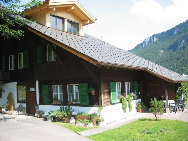 Beautiful Holiday Flat in Meiringen - Meiringen