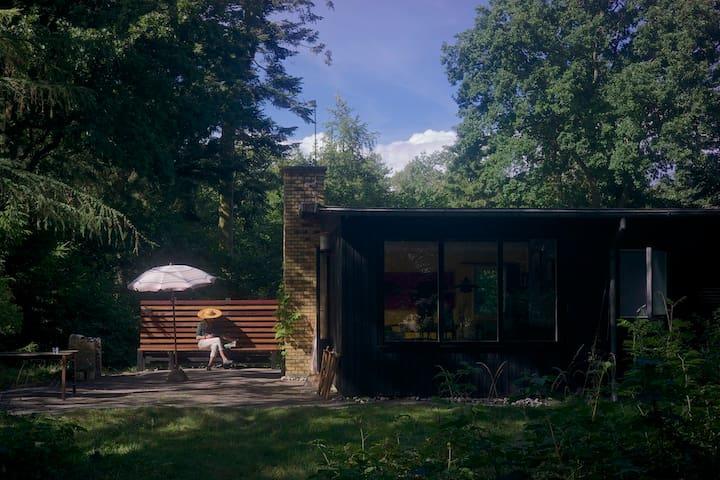 Cabin in the woods. - Strøby - Kulübe