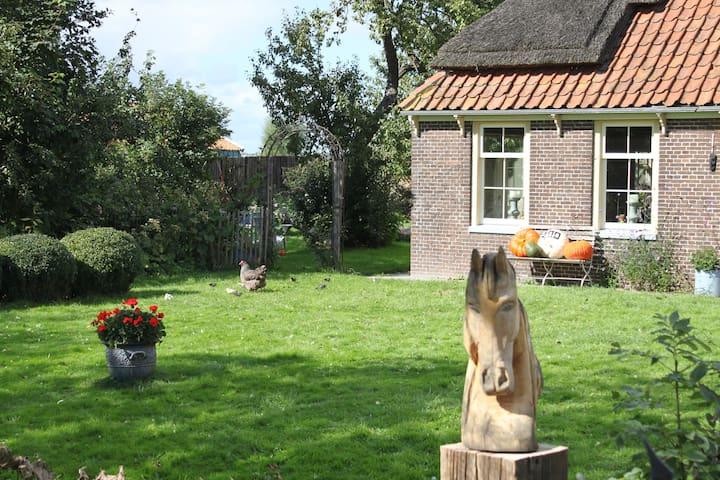 Old Farmhouse 30 min from Amsterdam - Spierdijk - Rumah