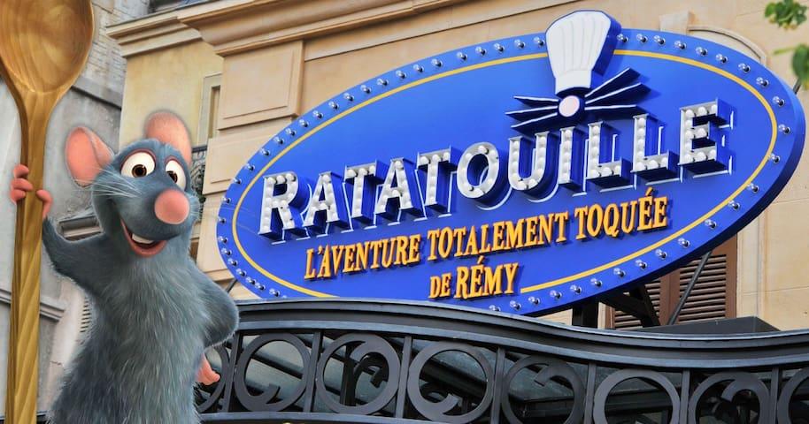 RATATOUILLE / DISNEYLAND PARIS 5MIN... - Bussy-Saint-Georges - Appartement
