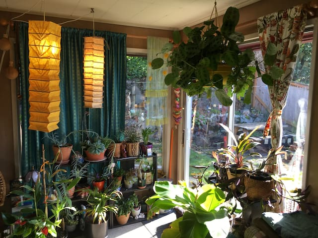 Peaceful green room in North City - Shoreline