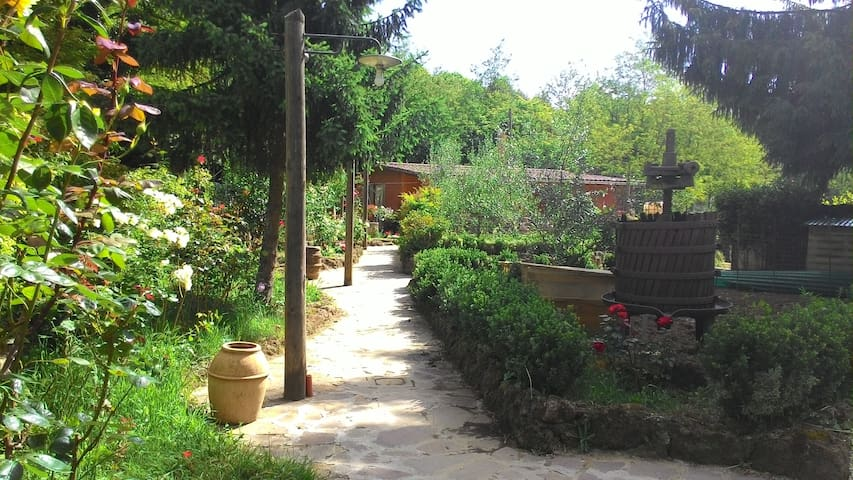 Country house, Room 1 - Ronciglione - Casa