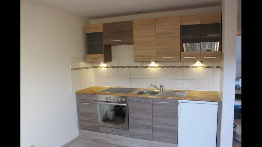 Newly renovated apartment - Bernau im Schwarzwald - Daire