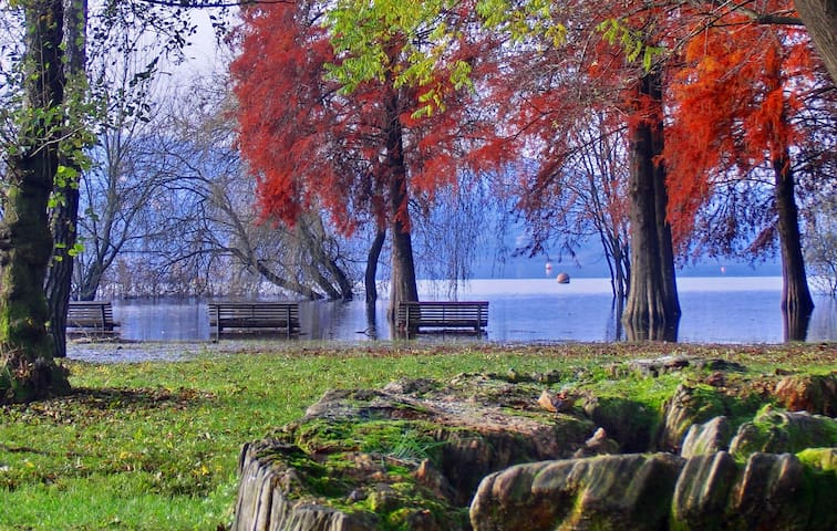 Spacious Apart Varese. 7 Lakes! - Varese - Lägenhet