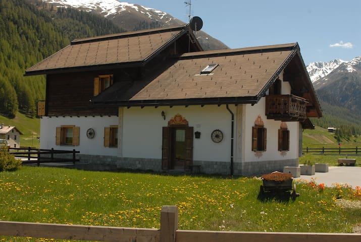 La Baita tra le Alpi  - Livigno - Pis