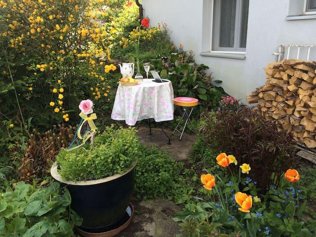 Newly renovated mini-studio - Ebmatingen