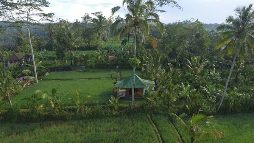 Lovely Rice Field Cottage - Bali - Huis