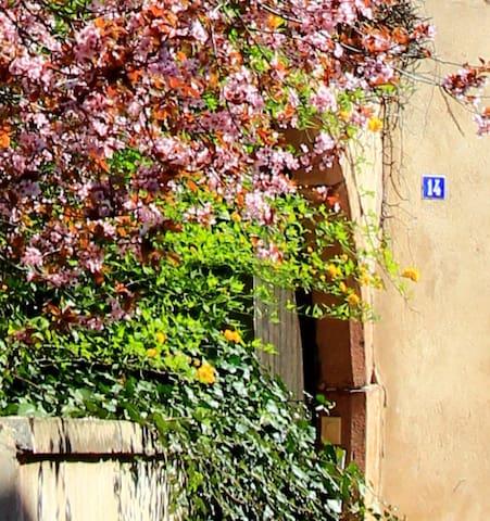 Maisonnette au cœur d'un village viticole - Andlau - Hus